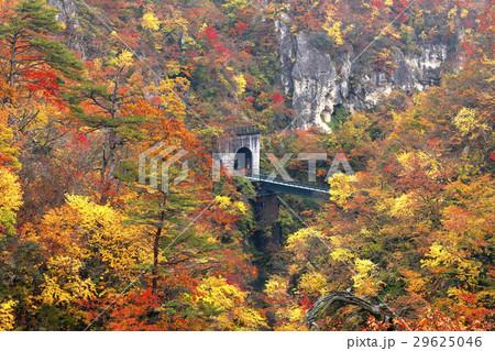 11月 紅葉の鳴子峡 東北の秋 29625046