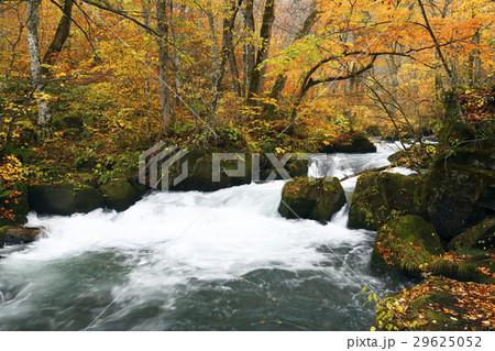 10月 阿修羅の流れ-紅葉の奥入瀬渓流- 東北の秋   29625052