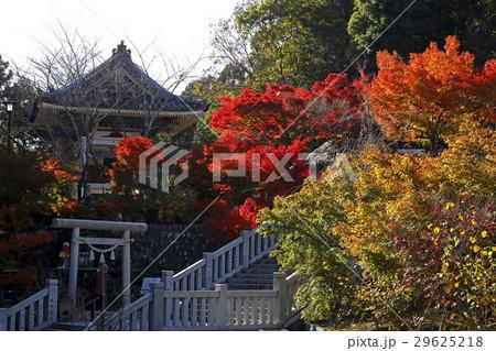11月 遠州三山の一つ 法多山尊永寺 29625218