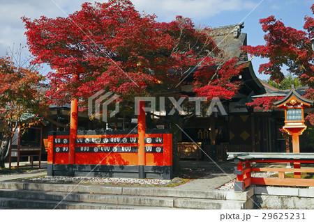 11月 紅葉の車折(くるまざき)神社 京都の秋景色 29625231