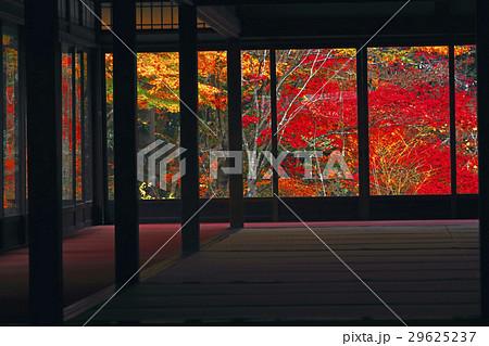 11月 紅葉の天授庵    京都の秋 29625237