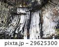 12月 青龍洞の玄武岩柱状節理 29625300