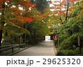 11月 遠州三山の一つ 医王山油山寺 29625320