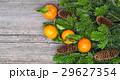 フルーツ 果物 マンダリンの写真 29627354