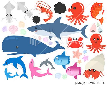 海の生き物イラストセット 29631221