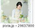 女性 キッチン 29637800