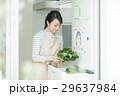 女性 キッチン 29637984