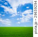 草原と青空 29639294