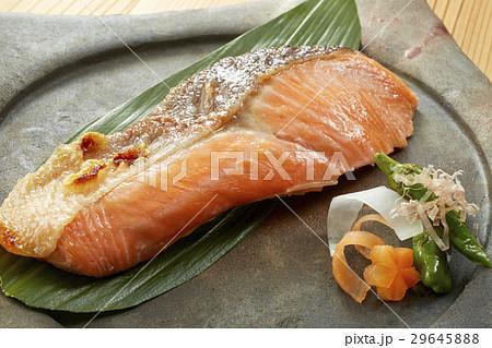 焼き魚 鮭(しゃけ) 29645888