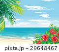 南国のビーチ イラスト 29648467