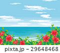 南国のビーチ イラスト 29648468
