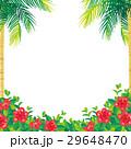 ハイビスカスとヤシの木 イラスト 29648470
