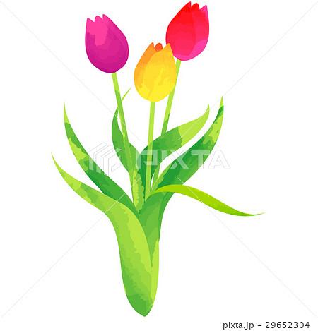 誕生花・3月・チューリップ 29652304