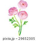花 誕生花 4月のイラスト 29652305