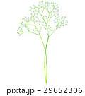 花 誕生花 5月のイラスト 29652306