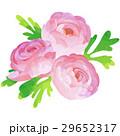 花 誕生花 ベクターのイラスト 29652317