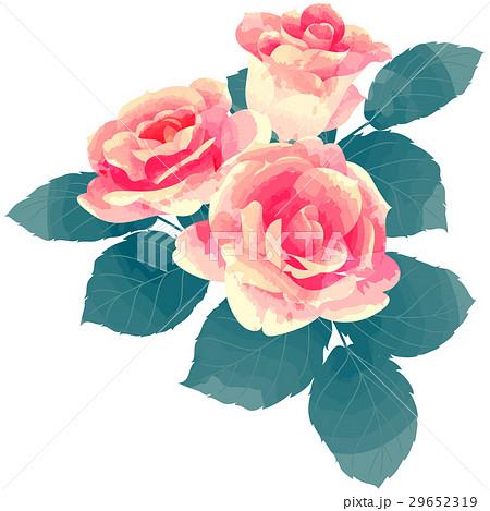 誕生花・6月・バラ 29652319