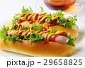 ホットドッグ パン 軽食の写真 29658825