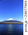 冠雪 富士山 山中湖の写真 29677969