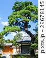 日本風景 29678145