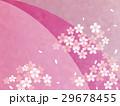 桜 和柄 和風のイラスト 29678455