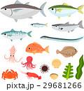 魚介類のイラストセット 29681266