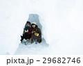 冬の女子旅 雪景色 29682746