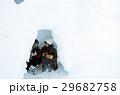 冬の女子旅 雪景色 29682758