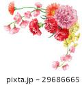 カーネーション 花 花束のイラスト 29686665