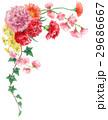 カーネーション 花 花束のイラスト 29686667