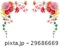 カーネーション 花束 フレームのイラスト 29686669