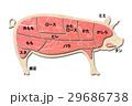 豚肉 29686738