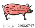 豚肉 29686747