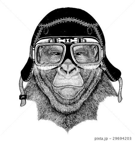 Vintage images of gorilla monkey for t-shirt 29694203
