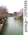 京都の桜 29704036