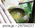 法然院の手水鉢 29704257
