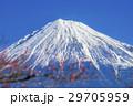 風景 富士山 梅の写真 29705959