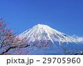 風景 富士山 梅の写真 29705960