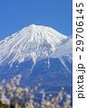 風景 富士山 梅の写真 29706145