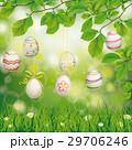 たまご 卵 玉子のイラスト 29706246