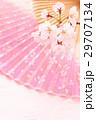 桜・扇子タテ02 29707134