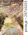 川と桜5 29710203
