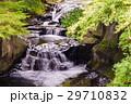 緑 水 滝の写真 29710832