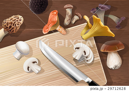 background with various kind of edible mushrooms 29712628