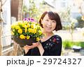 ガーデニング 花 パンジーの写真 29724327