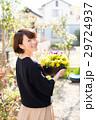 ガーデニング 花 パンジーの写真 29724937