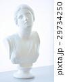 ニオペ胸像 29734250