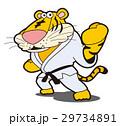 虎の空手、虎キャラクター、トラ、虎、空手、格闘技 29734891