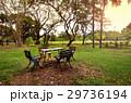 公園 こしかけ ベンチの写真 29736194