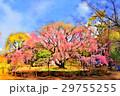 六義園の枝垂れ桜(4月)東京都文京区 29755255